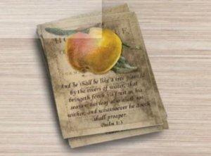Handmade Postcard Set, Psalm 1:3 He Shall Be Like a Tree Planted By The River