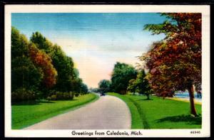 Greetings From Caledonia,MI BIN