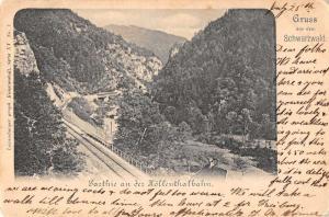 Schwarzwald Germany Gruss aus dem Black Forest railroad antique pc Y13078