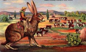 Texas Humour Exageration Texas Cowboy Riding A Huge Jack Rabbit Curteich
