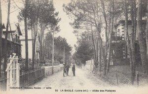 LA BAULE , France , 00-10s ; Allee des Platanes