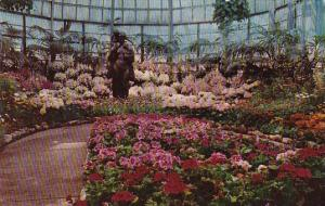 Illinois Chicago Easter and Spring Flower Show Lincoln Park