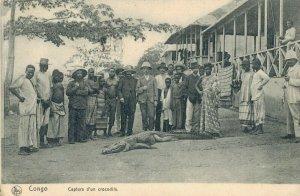 Africa Congo Capture d´un crocodile 03.74