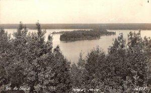 RPPC The Au Sable, Hale, Michigan ca 1930s Vintage Postcard