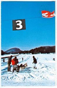 Dog sled races on Lac des Sables, Ste-Agathe-des-Monts, Quebec, Canada, 40-60s