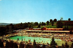 New York Grossinger Outdoor Swimming Pool and Cabanas Grossinger's Resort