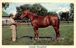 Kentucky Thoroughbred, Yearling Ready for sale Lexington, Kentucky, KY, USA W...