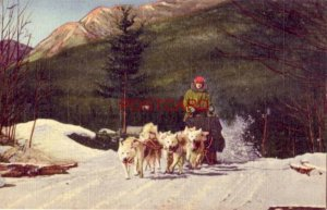 At North Woodstock, N.H. A TEAM OF ED CLARK'S ESKIMO SLED DOGS IN ACTION