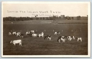 Watertown Dodge Co WI~Inland Stock Farm~Holstein Cows~Theo Lehmann~c1910 RPPC