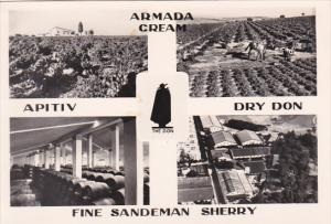 Portugal Sandeman Vineyards and Bodegas Multi View Real Photo