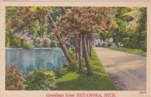Michigan Greetings From Metamora 1943