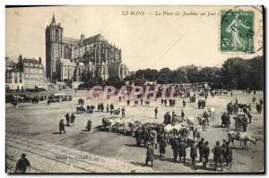 Old Postcard Le Mans Place des Jacobins a walking day Cows
