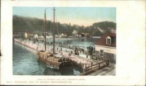 Murray Bay Quebec Pier & Boat c1905 Detroit Publishing Postcard