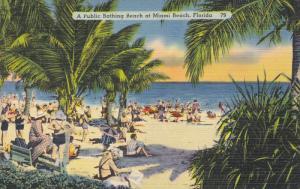 A Public Bathing Beach, MIAMI BEACH, Florida, 1930-1940s