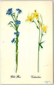 Grand Teton National Park Wyoming Postcard Artist-Signed CRANDALL Wild Flowers