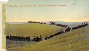 Harvesting in the Wheat Fields Eastern Oregon, Washington, USA Farming 1908 m...