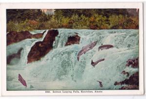 Salmon Leaping Falls, Ketchikan AK