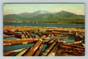 Ontario- Canada, Port Angeles, Juan de Fucca Straits, Timber, Chrome Postcard