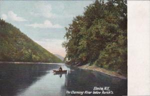 New York Elmira The Chemung River Below Rorick's