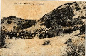 CPA AK Gedi-Larbi - Abreuvoir fait par les Senegalais MAROC (963947)