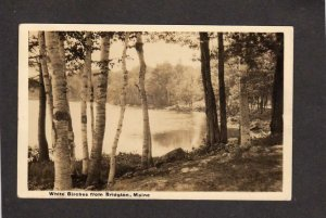 ME White Birches Bridgton Maine Real Photo RPPC RP Postcard