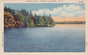 New York Greetings From Goshen Curteich