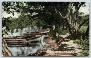 Lake Benton Minnesota~Rowboats by Shore Near Tree Leaning Two Directions~c1907