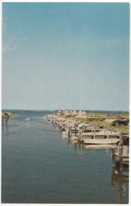 Greetings from Ocean City, Maryland, Marina on Sinepuxent Bay, unused Postcard