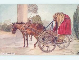 Unused Old Postcard EKAH HORSE AND CART Bareilly - Uttar Pradesh India F5358
