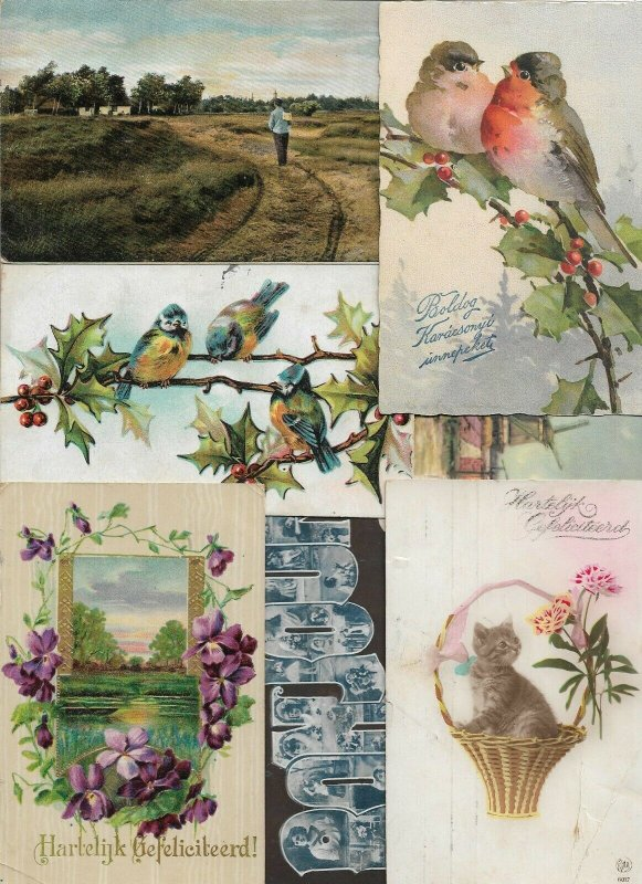 New Year, Animals People Flowers and More Themes Postcard Lot of 40 01.12