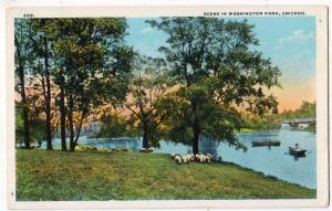 Washiington Park, Chicago IL