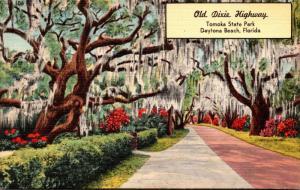 Florida Daytona Beach Tomoka State Park Old Dixie Highway