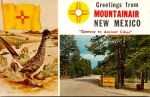 New Mexico Mountainair Greetings Showing Road Runner & New Mexico Welcome Sign