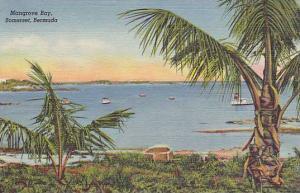 Mangrove Bay, Bermuda, 30-40s