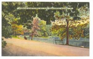 A Popular Scene in John Ball Park, Grand Rapids, Michigan, 30-40s