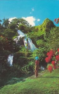 Jamaica Ocho Rios Waterfall Shaw Park Gardens