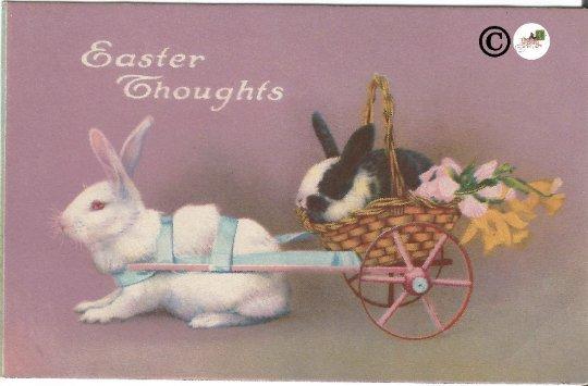Vintage Postcard Real-life White & Black/White Easter Bunny in Basket Wagon