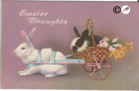 Vintage Postcard Real-life White & Black/White Easter Bunny in Basket Wagon