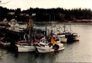 Alaska Yakutat Sitka Sound Dock Fishing Boats