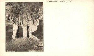 MAMMOTH CAVE, KY Bridal Altar Ben Hains ca 1900s Vintage Antique Postcard
