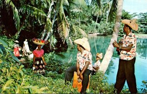 Jamaica Port Antonio Scene By The Blue Hole Lagoon