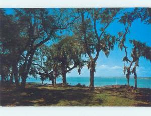 Pre-1980 INTRACOASTAL WATERWAY Hilton Head Island South Carolina SC hn1563