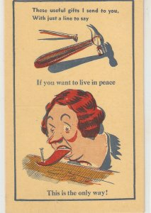 A cruel punishment. Useful things . New Donald McGill Comics Postcard