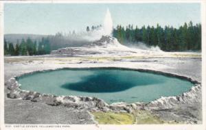 Castle Geyser Yellowstone National Park Detroit Publishing