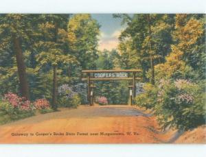 Unused Linen VINTAGE SIGN AT STATE FOREST ENTRANCE Morgantown WV c7949