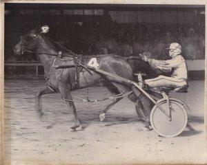 ROOSEVELT RACEWAY, Harness Horse Race , MALICE (4) winner, 1981