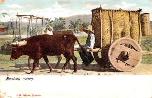Mexico Old Vintage Antique Post Card Mexican Wagon Unused