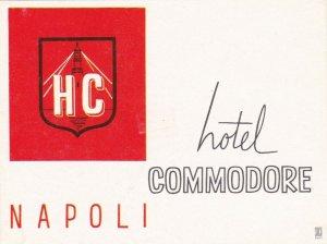 Italy Napoli Hotel Commodore Vintage Luggage Label sk2315