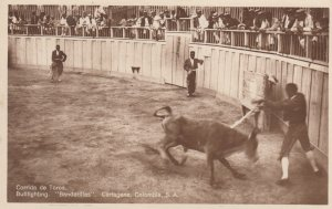 RP: Cartagena , Colombia , 00-10s ; Bull Fight #1