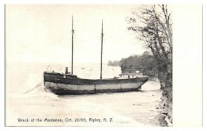 1905 Wreck of Schooner Mautenee, Ripley, NY Great Lakes Shipwreck Postcard *5H5
